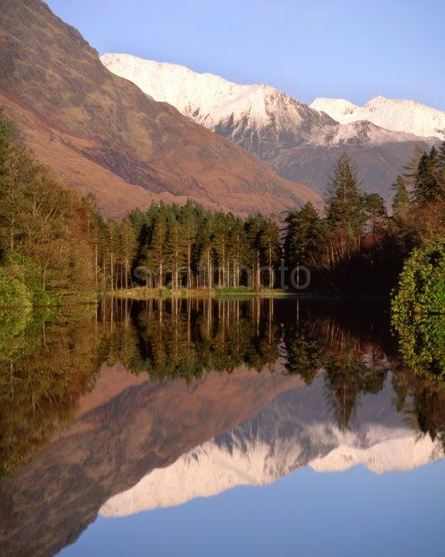 Mamore Hills From Lochan Trail Forest Walk Glencoe