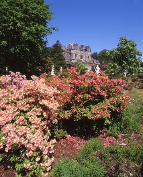 Springtime At Torosay Castle From Gardens Island Of Mull