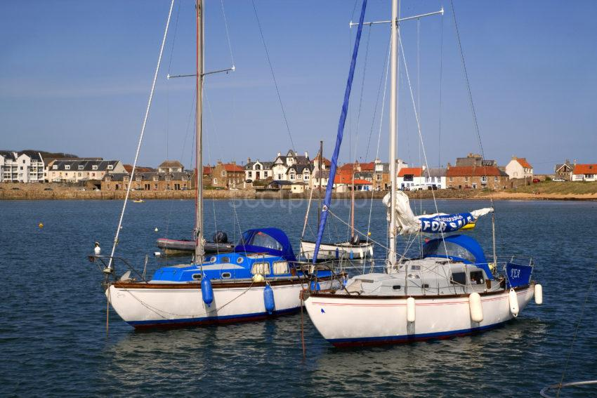Elie From Pier With Yachts East Neuk Fife