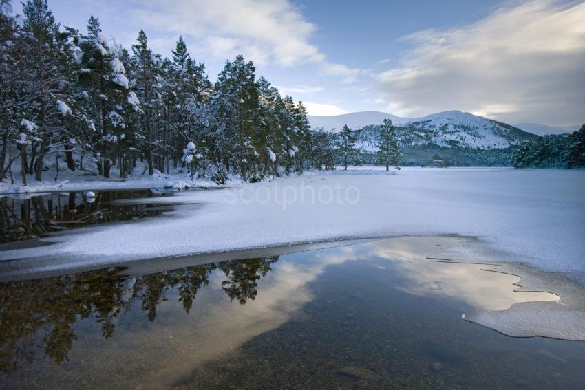 Winter From Shore Of Loch An Eilein Cairngorm Mountains