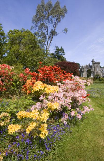 Achnacloich Castle And Garden Argyll Portrait