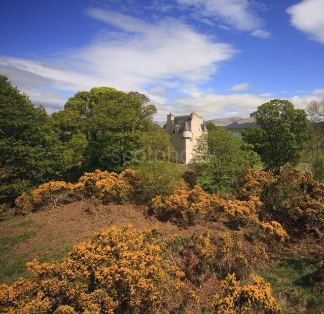 I5D2338 Barcaldine Castle Spring