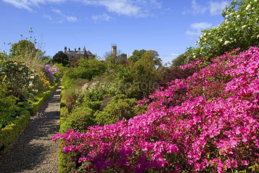 Ardmaddy Castle From Garden
