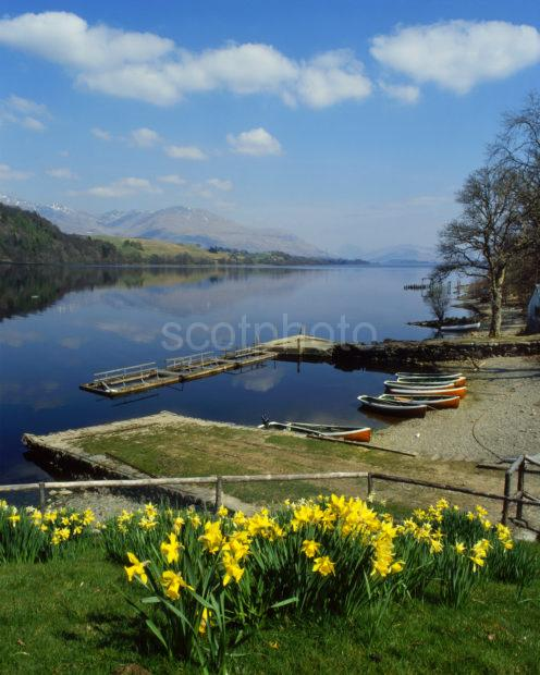 Springtime On Loch Awe From Portsonachan