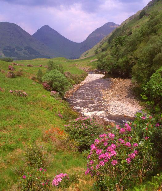 Springtime In Glen Etive With River Etive In View Argyll