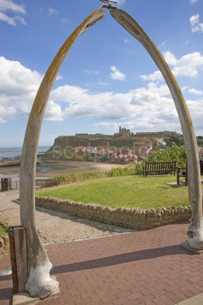 Whale Arch Whitby