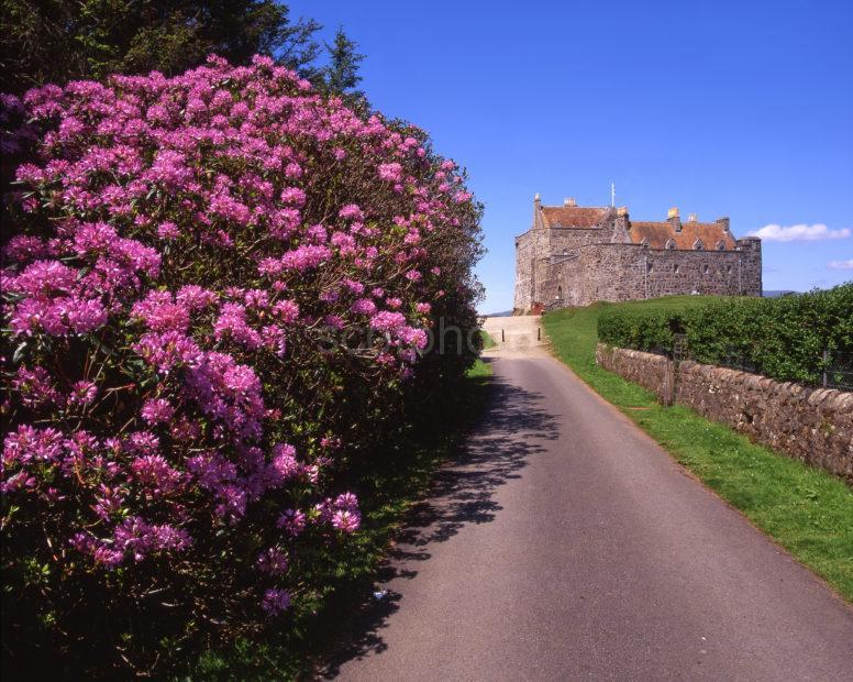 Springtime At Duart Castle Island Of Mull
