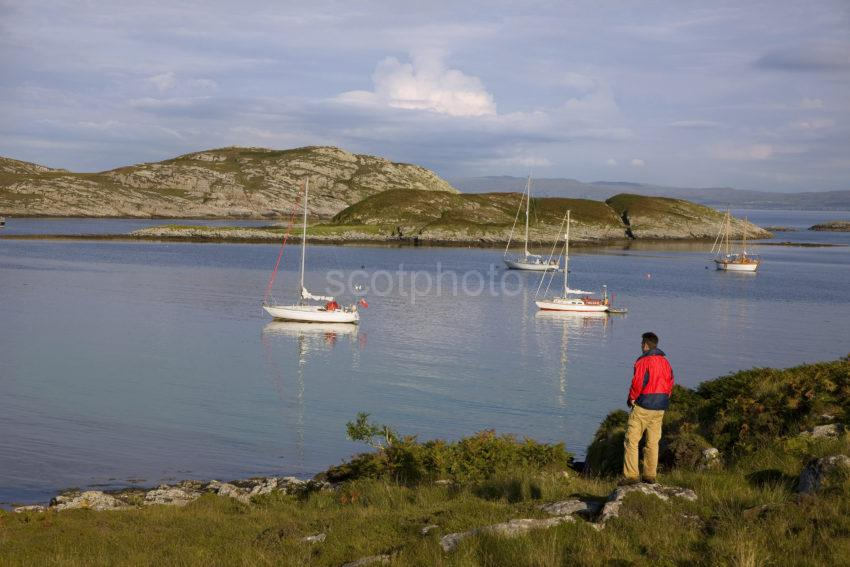 YACHTS IN ARNIGOUR BAY COLL