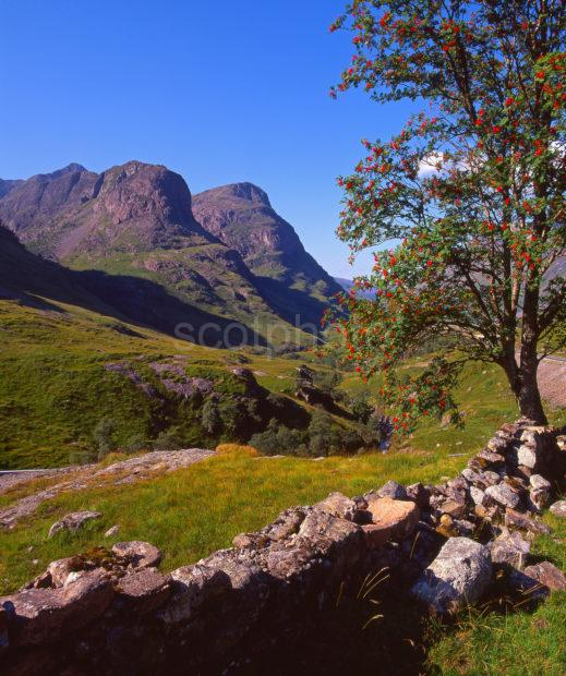 A Peaceful Late Summer Scene In The Famous Pass Of Glencoe Better Known As The Weeping Glen West Highlands