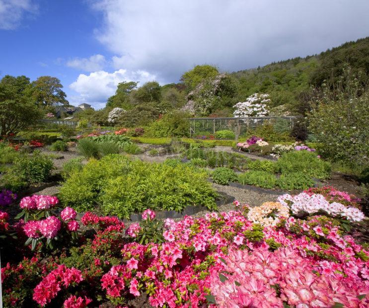 Ardmaddy Garden Argyll