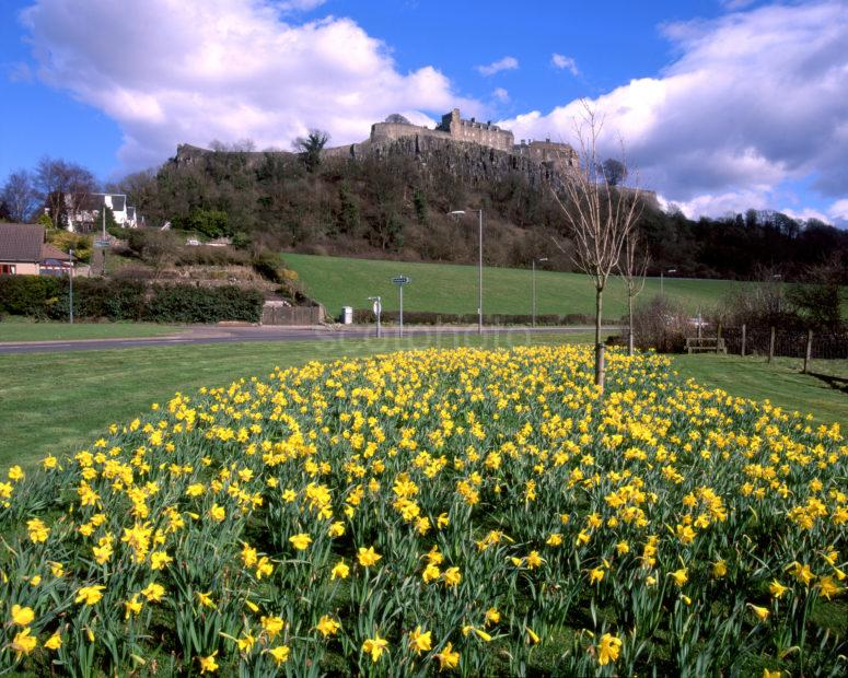 Springtime View Of Stirling Castle From The West Stirling Region
