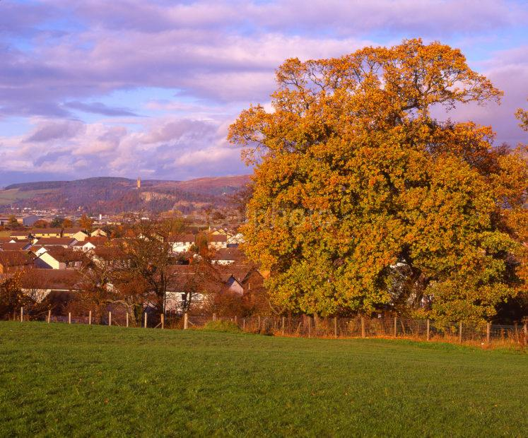 Autumn Scene Looking Towards The Ochil Hills And The Wallace Monument As Seen From The South East Stirling Stirlingshire