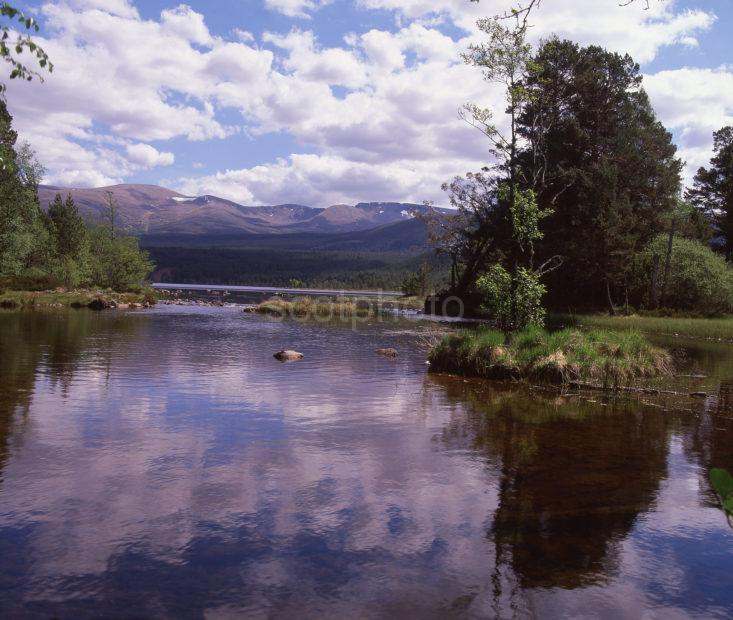 River Luineag Towards Cairngorm Mountains Summer