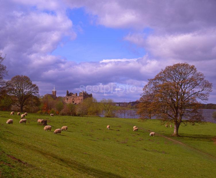 Spring View Of Linlithgow Palace Linlithgow West Lothian
