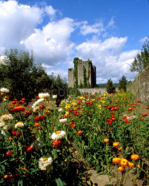 Gardens At Castle Kennedy Dumfries And Galloway