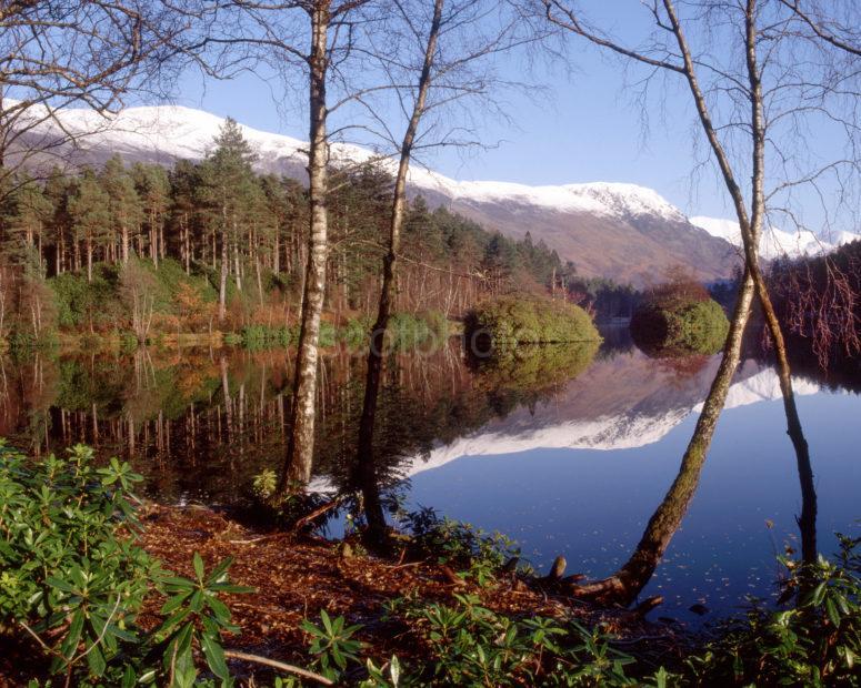 Loch Trail Forest Walk Glencoe Towards The Mamore Hills