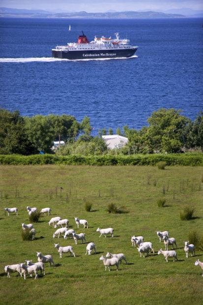 I5D8561 CALEDONIAN ISLES D