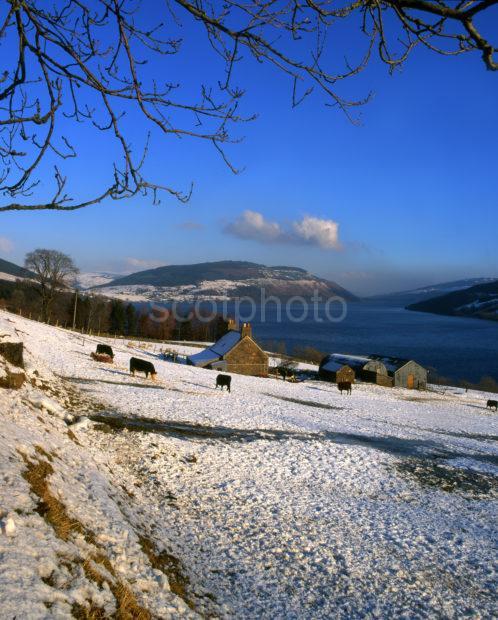 Winter On Loch Tay
