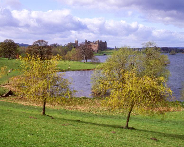 Springtime View Across Linlithgow Loch Towards The Palace West Lothian