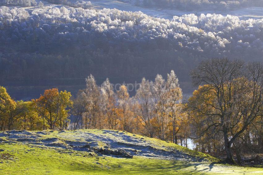 WY3Q6400 Autumn Loch Tummel