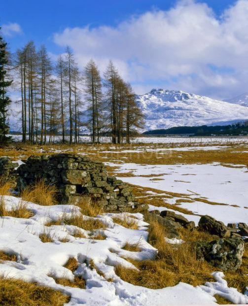 Winter Shore Of Loch Moy
