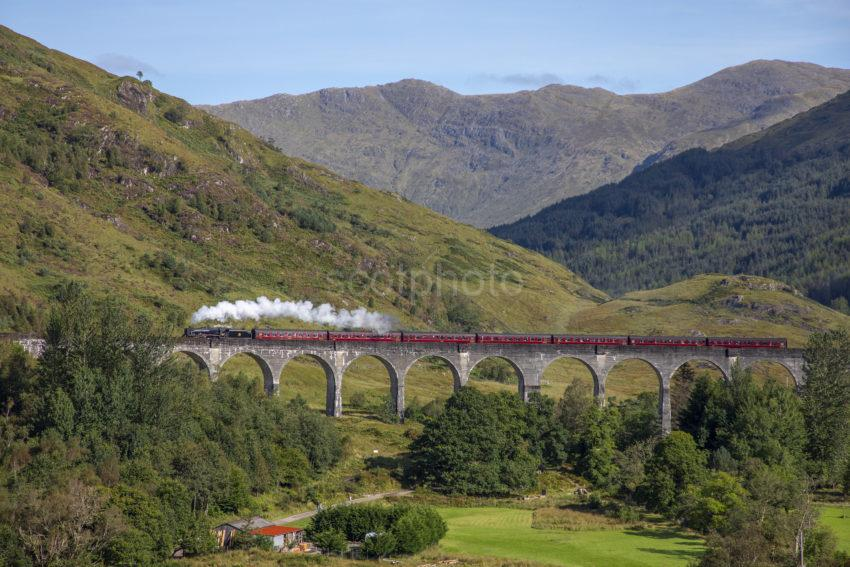 0ddd36bb 198a7104 Steam Train Crossing Glenfinnan Viaduct