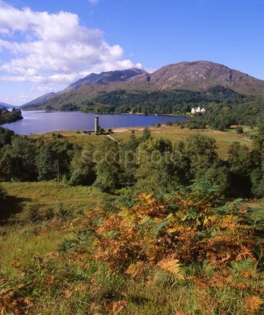 Acf23b58 Autumn View Of Glenfinnan