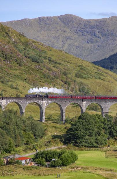 51affe22 198a7103 Steam Train Glenfinnan Portrait
