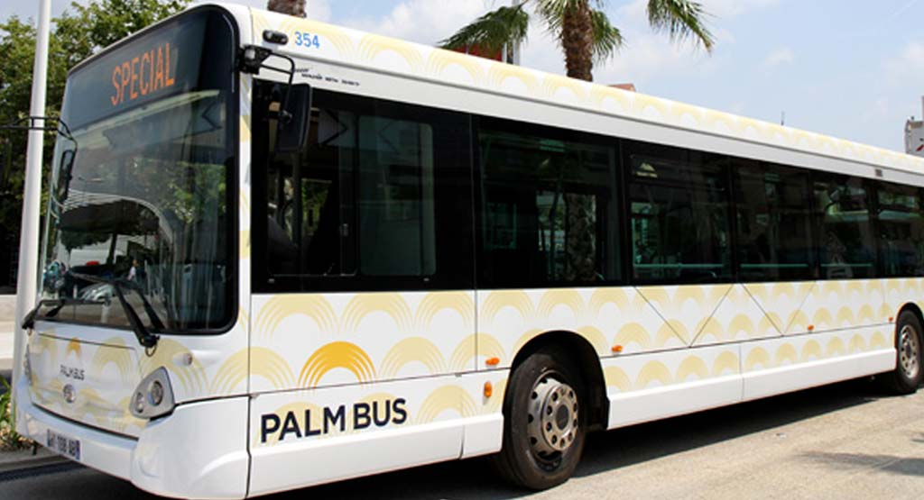 Palm Bus : reprise du trafic à 100%