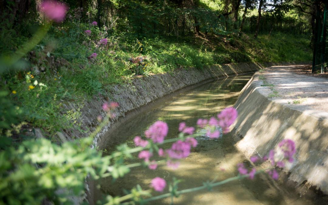 Mise hors d'eau du canal de la Siagne