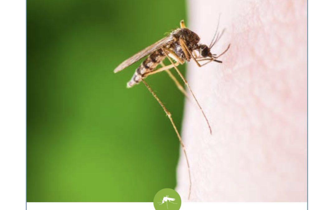 La Ville aide les Mouginois à lutter contre la prolifération des moustiques