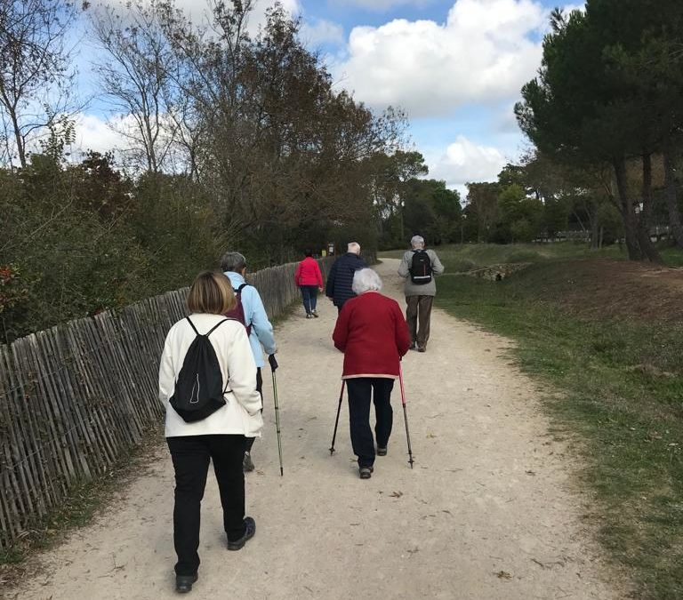 Confinement : maintien de certaines activités pour les seniors