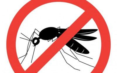 Lutte contre les moustiques: accueils de loisirs et crèches traités!  Et une subvention pour les particuliers