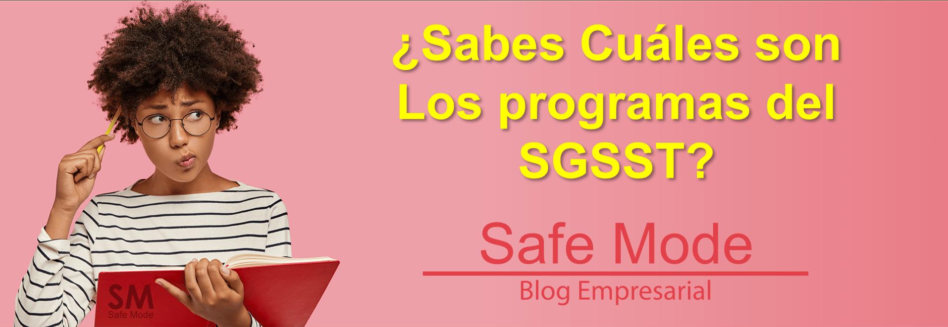 Programa del SGSST