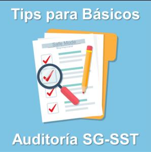 recomendaciones para auditorias SST