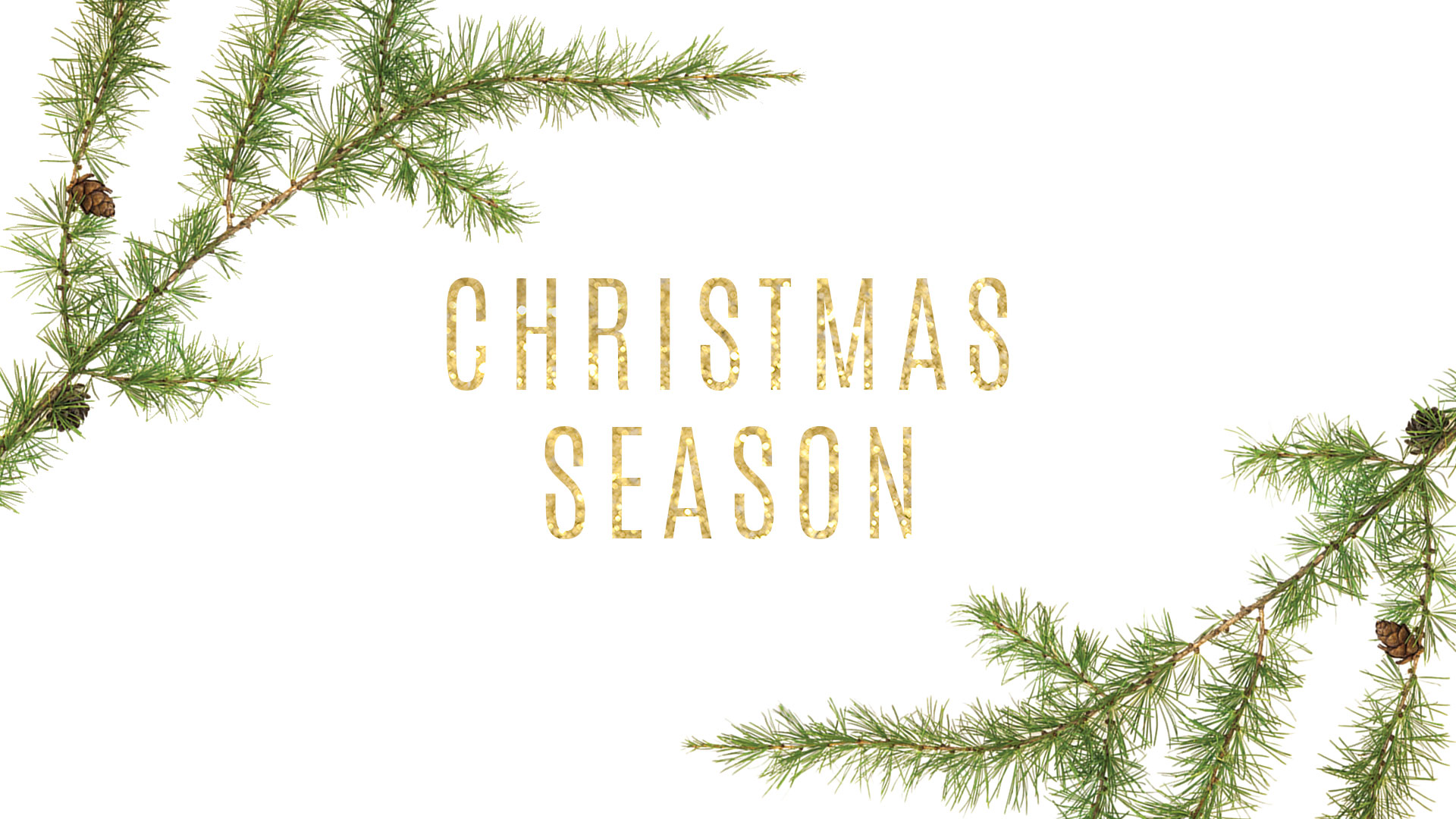 masthead: Christmas Season 2019