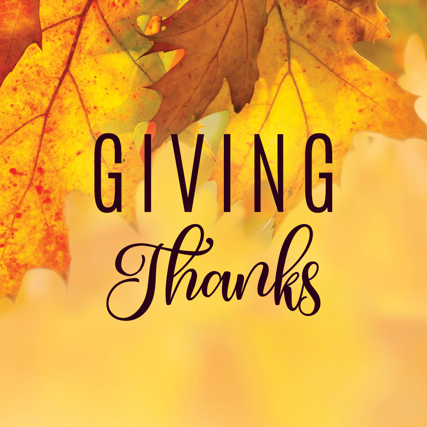 series: Giving Thanks