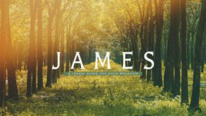 masthead: James: A Travel Guide for Good Behavior