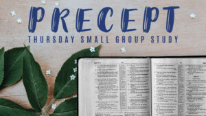 Precept Thursday Small Group Study