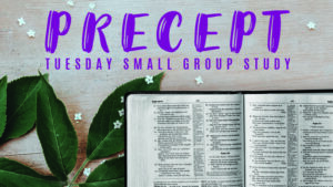 Precept Tuesday Small Group Study