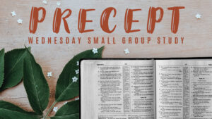 Precept Wednesday Small Group Study