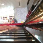 #ストリートピアノ#エリーゼのために【ストリートピアノ】エリーゼのために L.v.ベートーベン