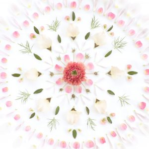 Tapeter Flora Sandbergica Flower mandala 629-02 629-02 Interiör