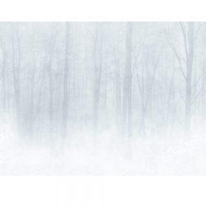 Tapeter Special Edition Vinterskog 622-18 622-18 Interiör
