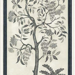 Tapeter Martyn Lawrence Bullard Trees of Eden ETERNITY 113/14041 113/14041 Mönster