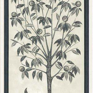 Tapeter Martyn Lawrence Bullard Trees of Eden LIFE 113/14043 113/14043 Mönster