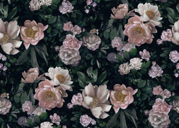 Tapeter In Bloom New Dawn Rose 7234 7234 Interiör