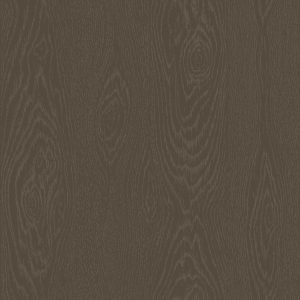 Tapeter Foundation Wood Grain 92/5025 92/5025 Mönster