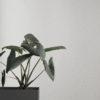 Tapeter Confetti Wallpaper – 172 172 Interiör