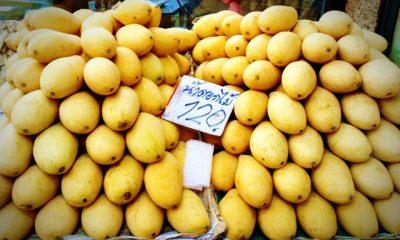 mango street prices Bangkok